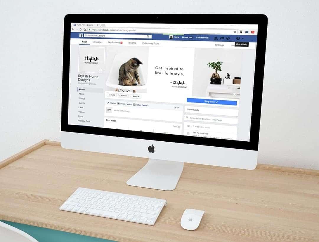 Facebook i sieci społęcznościowe są istotne w marketingu w Internecie