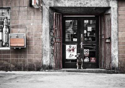 studio-a7-bydgoszcz-druk-obrazy-na-plotnie-miasta-007